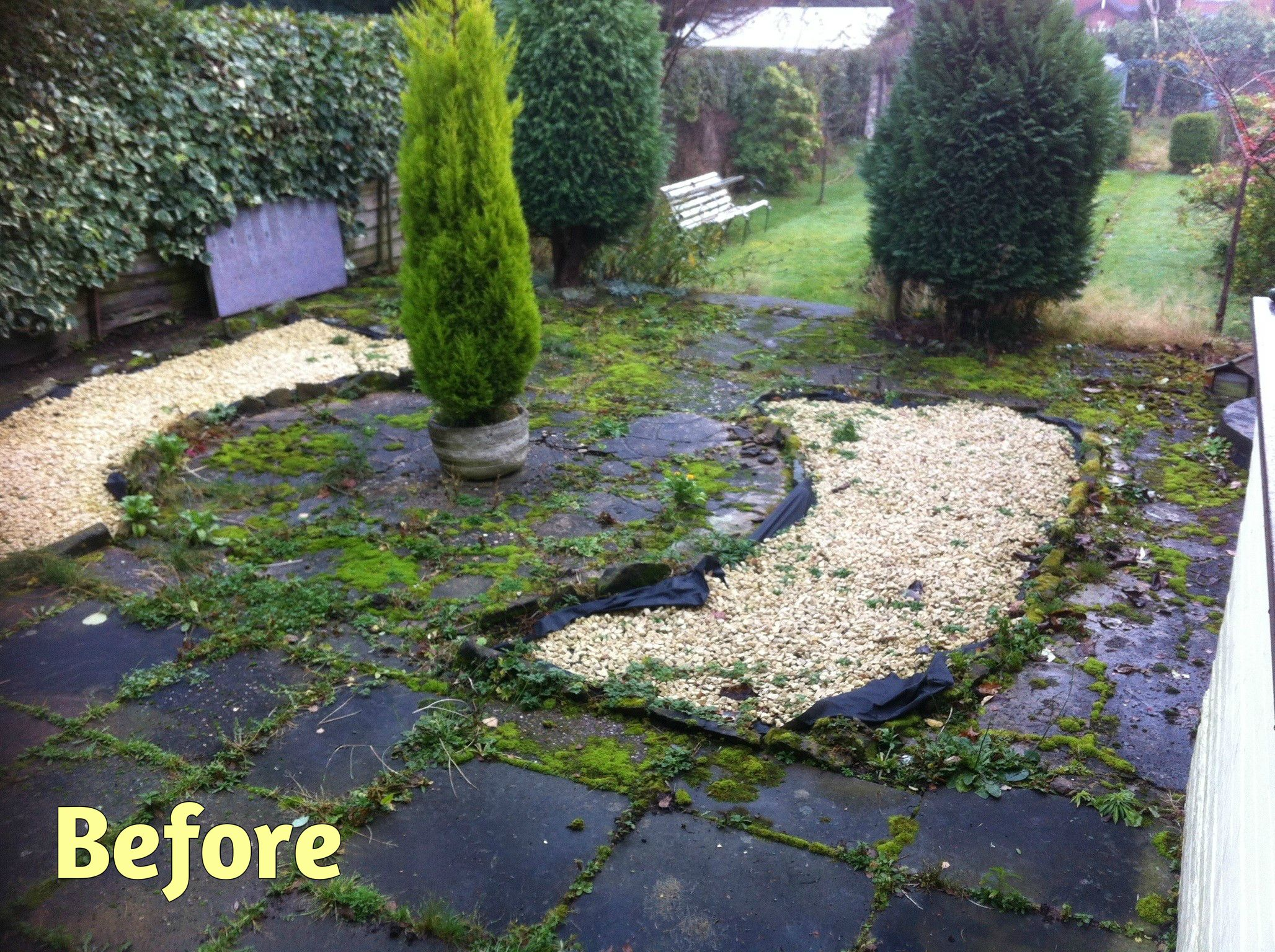 Low maintenance gardens parkes quality landscaping for Small no maintenance garden